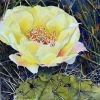 Pretty Prickly!,2018, 8x8 ins., $350. unframed