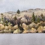 Annaghmakerrig-4, 2019, watercolour, 6x12 ins.