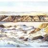 Elizabeth Kirschenman, Deer Tracks, card