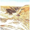 Elizabeth Kirschenman, Deer Trails, card