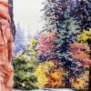 Elizabeth Kirschenman, Angels\' Landing Trail, Zion National Park, Utah, 2016