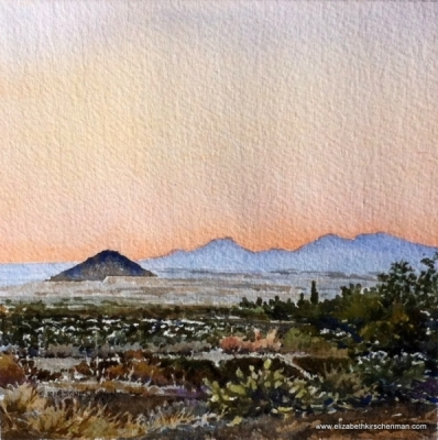 Elizabeth Kirschenman, Arizona Saguaro National Park - Dusk, 2016