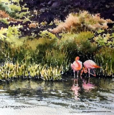 Elizabeth Kirschenman, Galapagos Flamingos 2, 2016