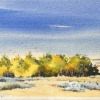Aspens 3, Waterford, 2020, 5.25 x 14.5 ins., $250., unframed