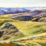 Elizabeth Kirschenman, Shortgrass Summer, 2013, sold