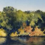 Fall-Fishing 2,2020, 5x14 ins., sold